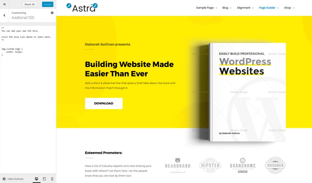 Adding Custom CSS Code | Astra