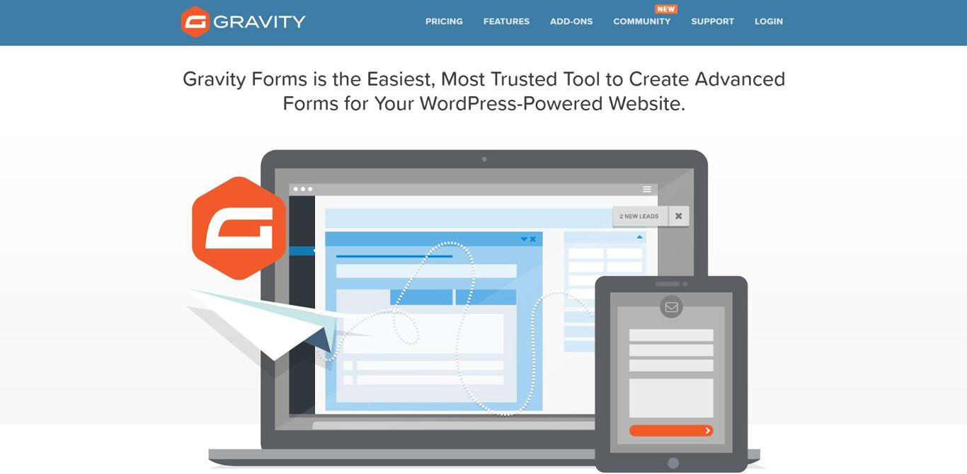 Gravity form plugin image