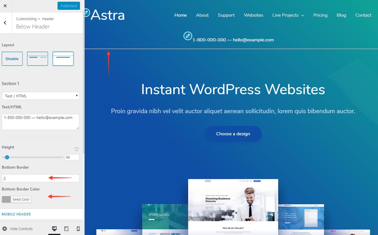 Below Header Section | Astra