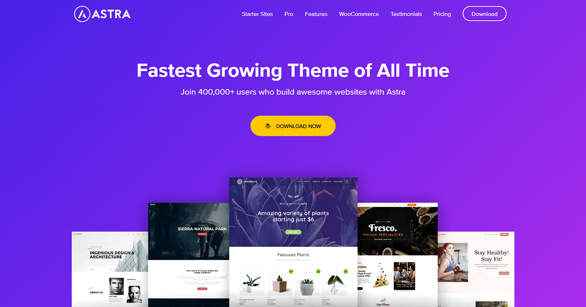 Astra – Fast, Lightweight & Customizable WordPress Theme for Any Website