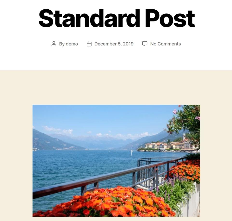 standard post image block