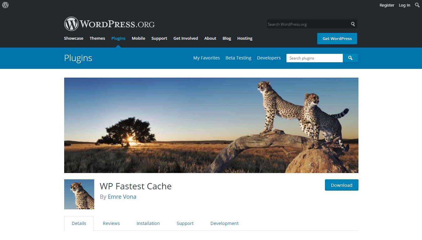 WP Fastest Cache download page