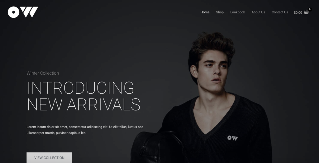 brandstore pro astra starter site