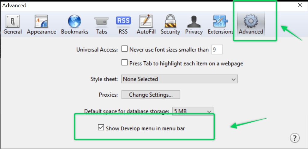 Clear browsing data settings on Safari browser