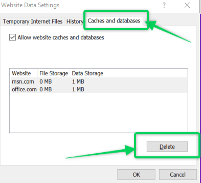 Clear caches and database settings on Internet Explorer browser