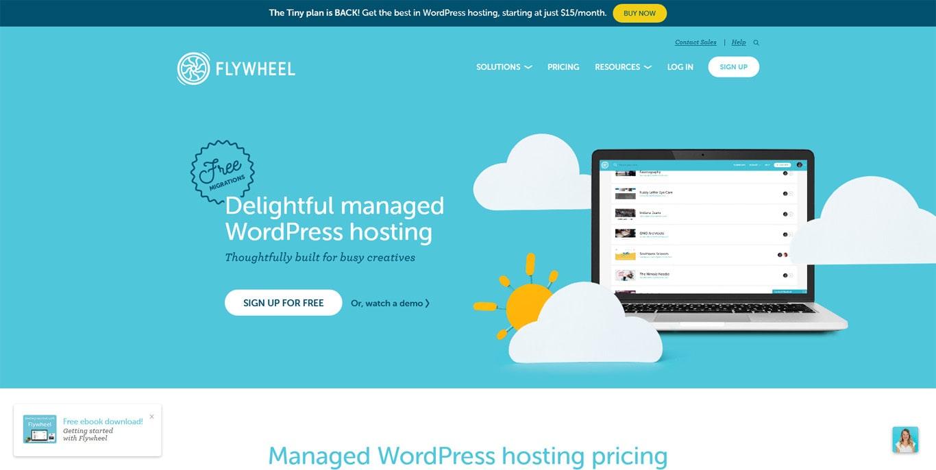 Flywheel hosting homepage screenshot