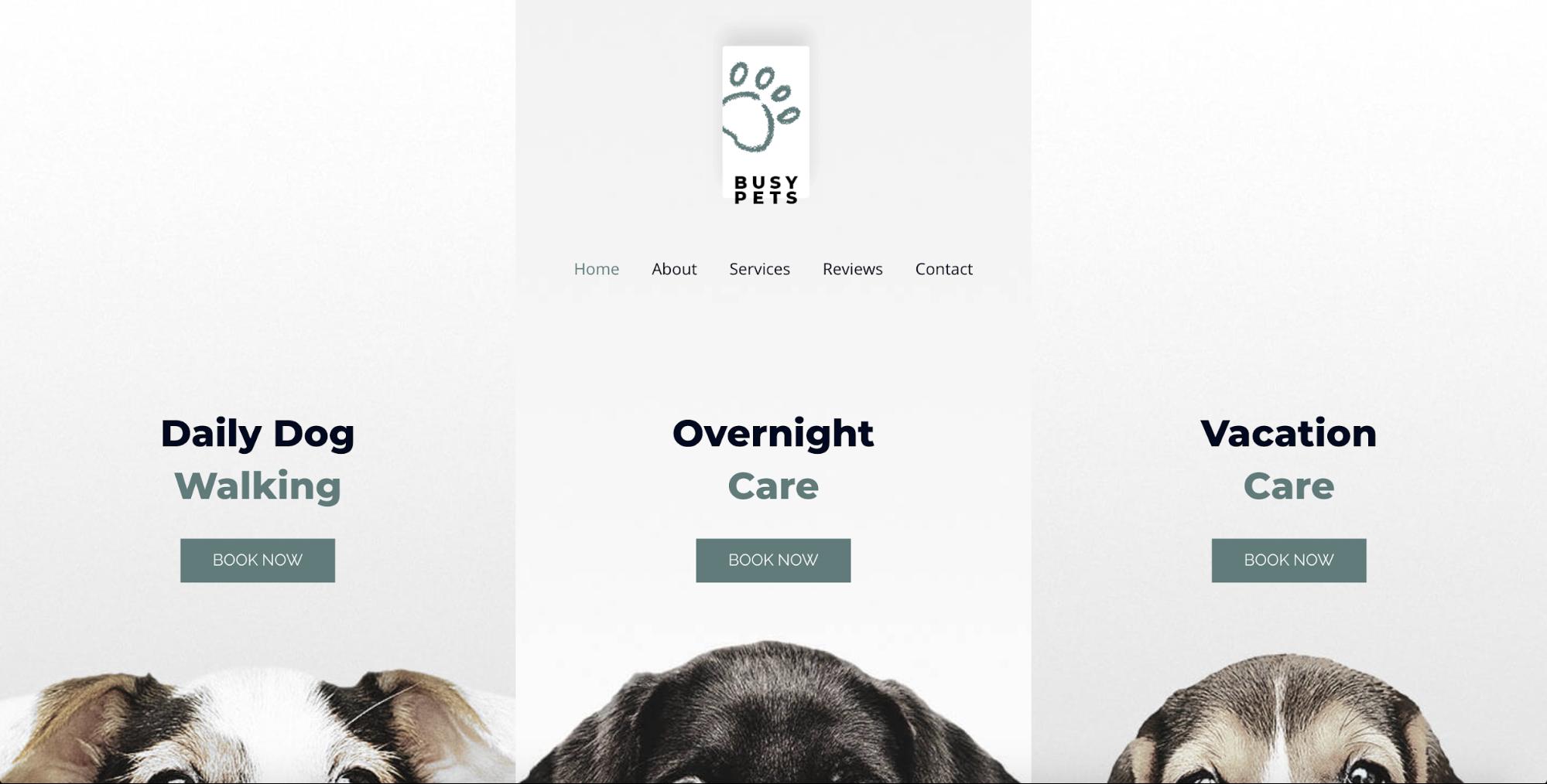 pet care astra starter site