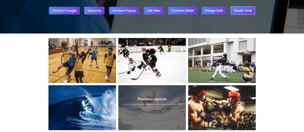 Portfolio Gallery plugin customization settings
