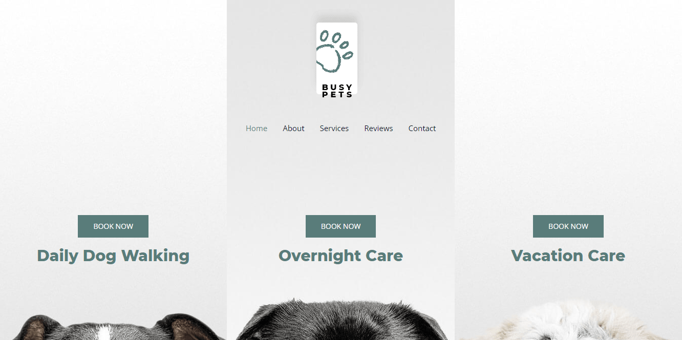 Pet Care Astra Template homepage screenshot