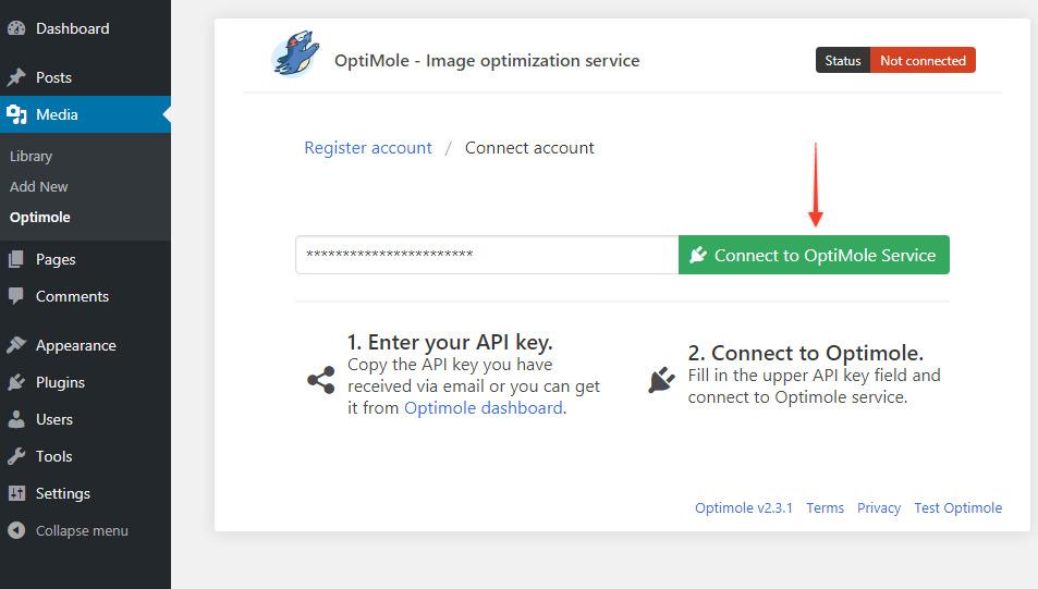 Connect to Optimole service