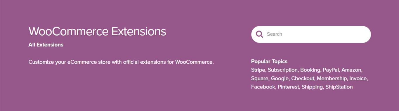 WooCommerce Extension Header