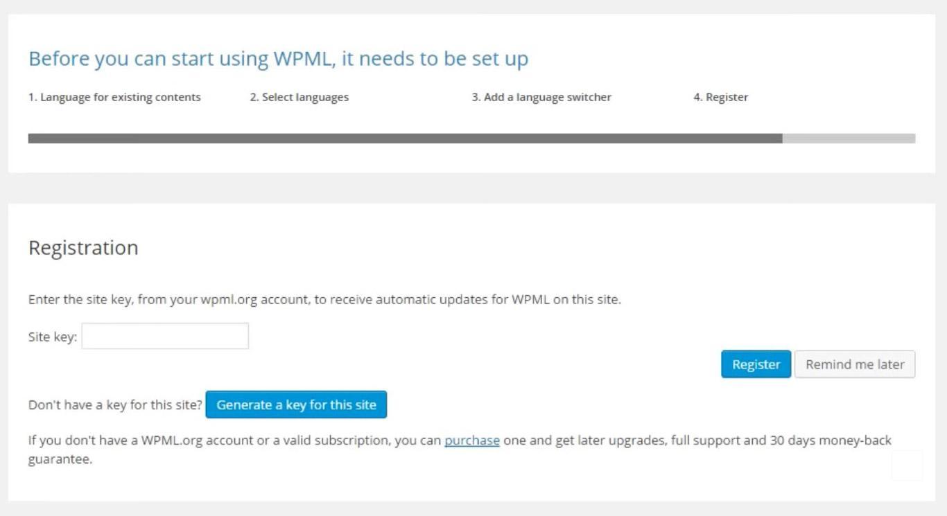 WPML language registration image