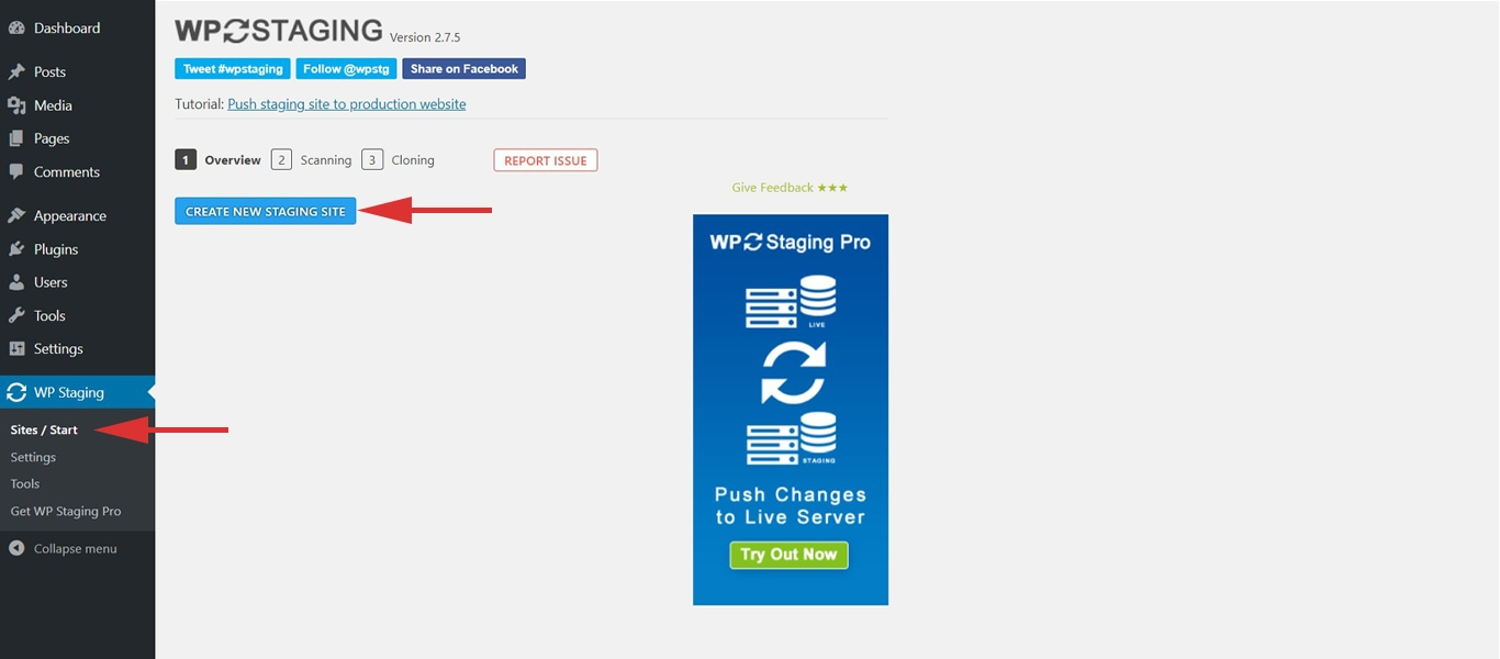 WP Staging new site