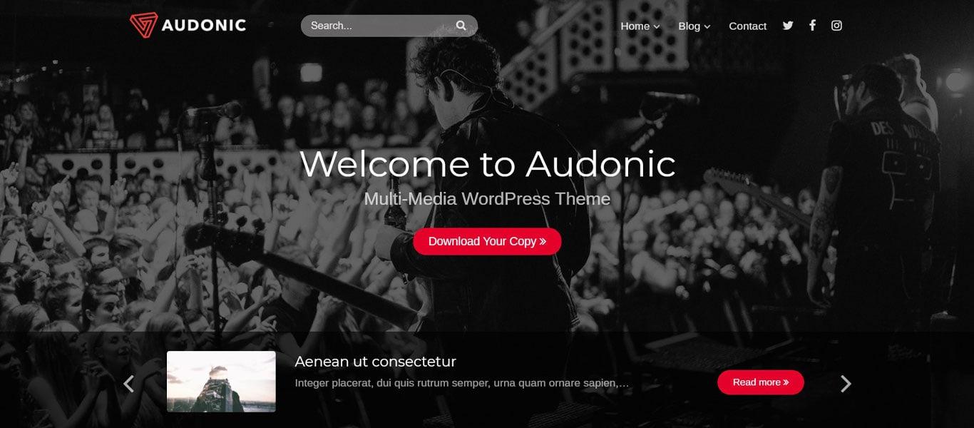 Audonic site image
