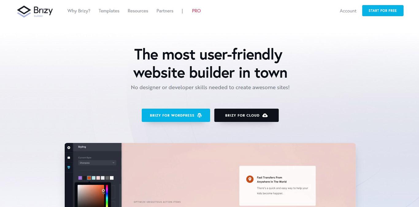Brizy site image