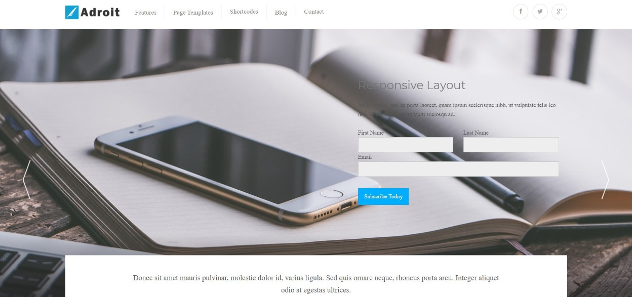 Adroit wordpress theme