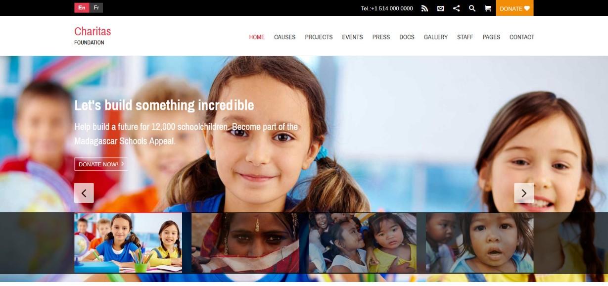 Charitas Demo site
