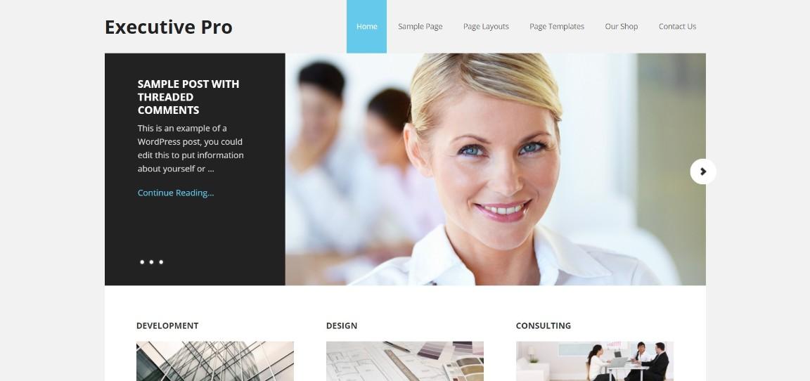Executive Pro business theme