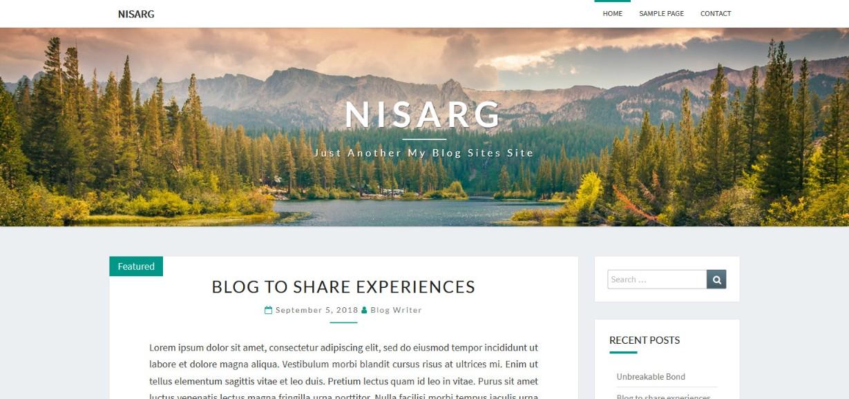 Nisarg simple wordpress theme