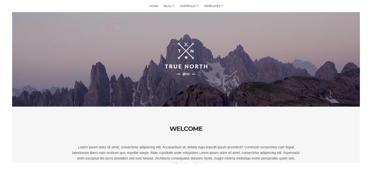 True North demo