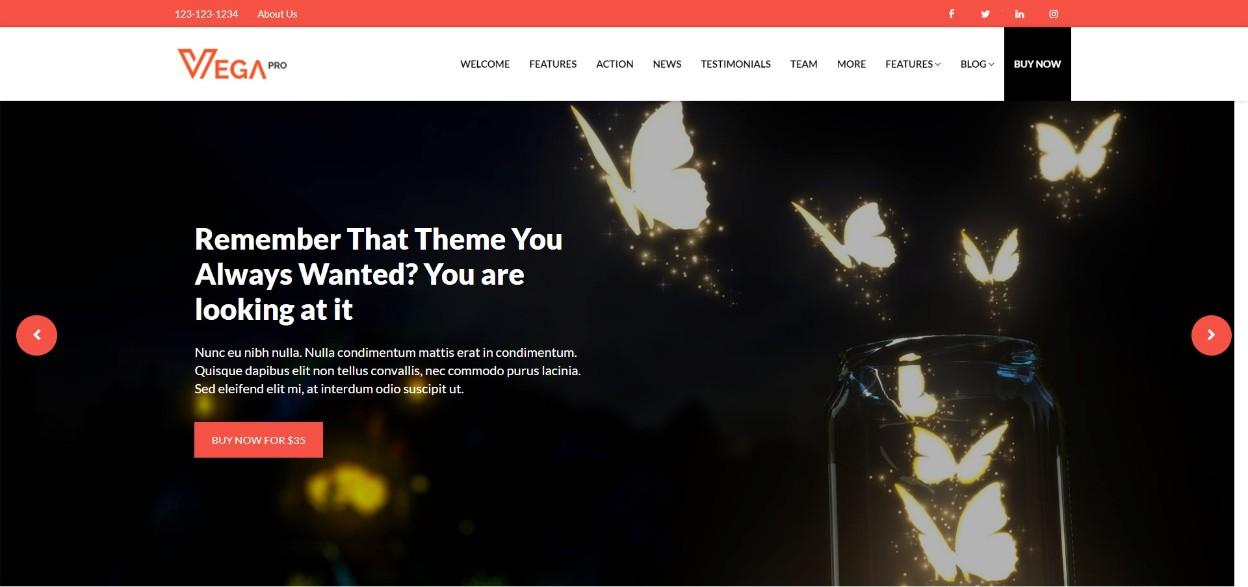 Vega Pro responsive theme
