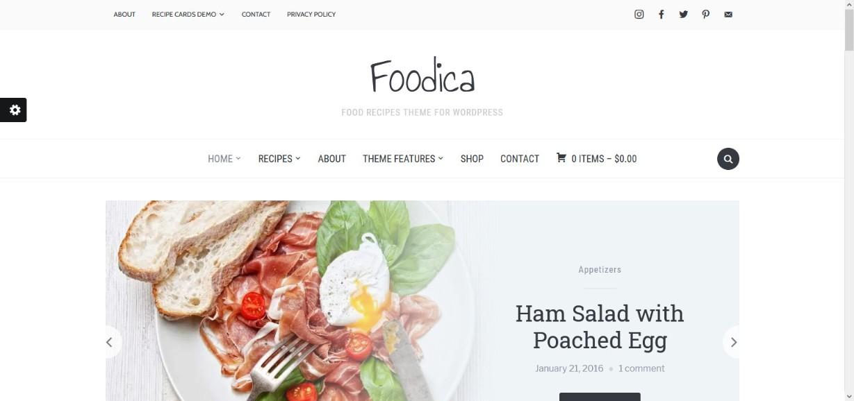 WPZOOM Foodica Demos