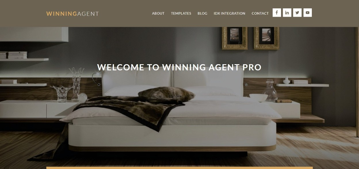 Winning Agent Pro theme demo