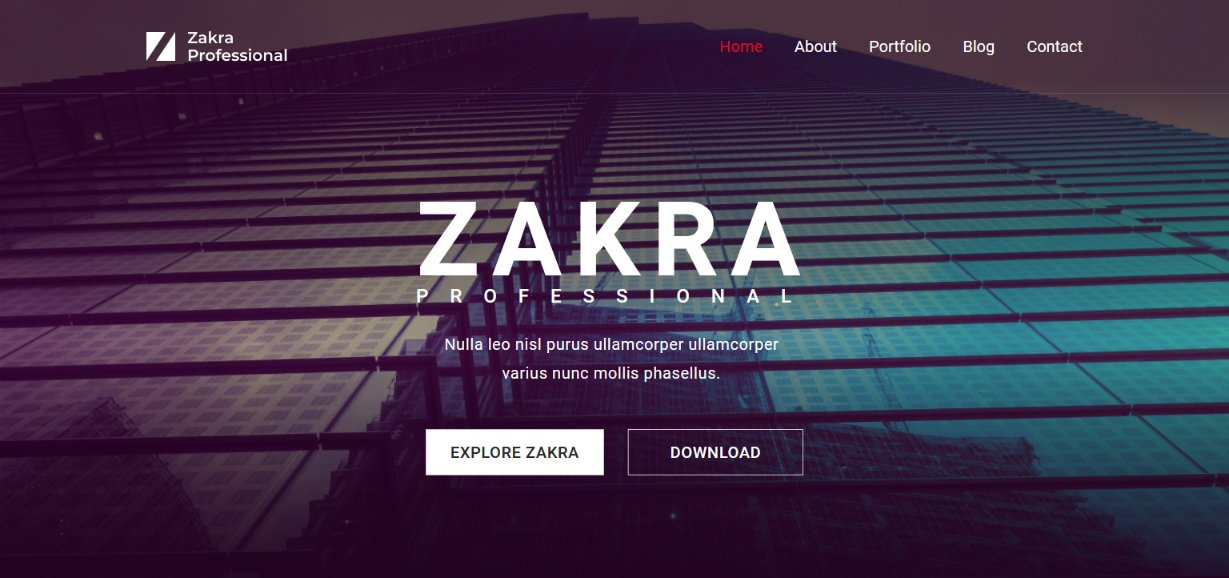 Zakra Professional demo template