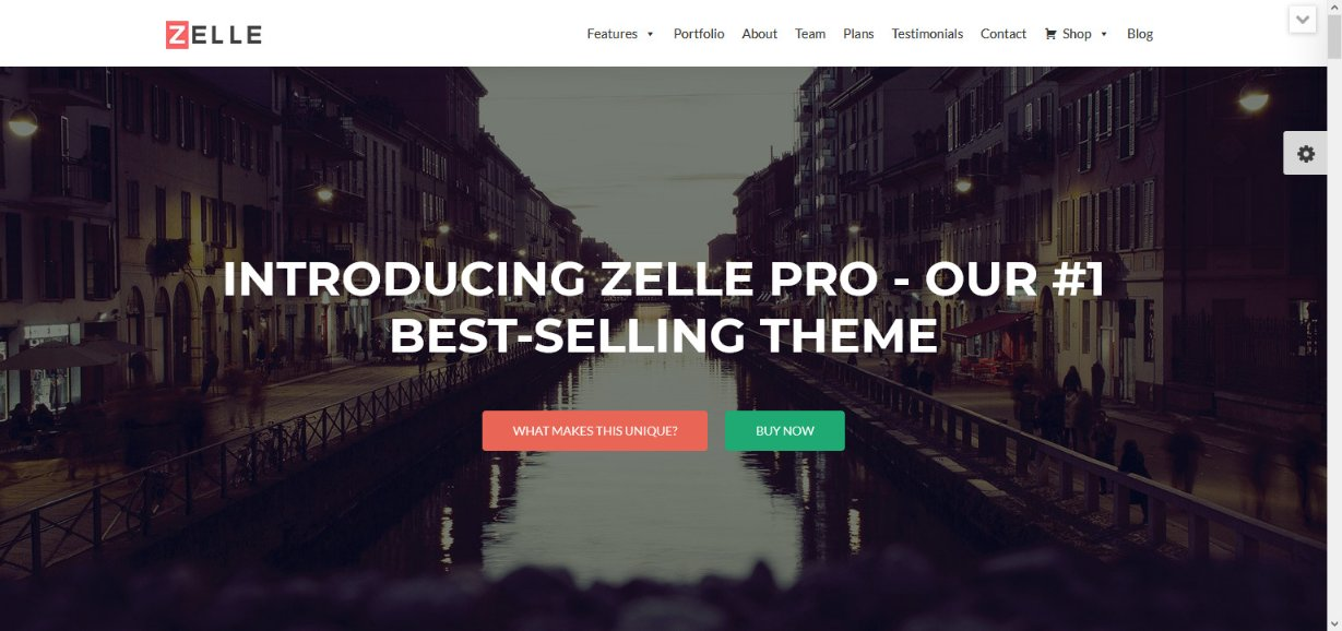 Zelle PRO WordPress Theme demo site