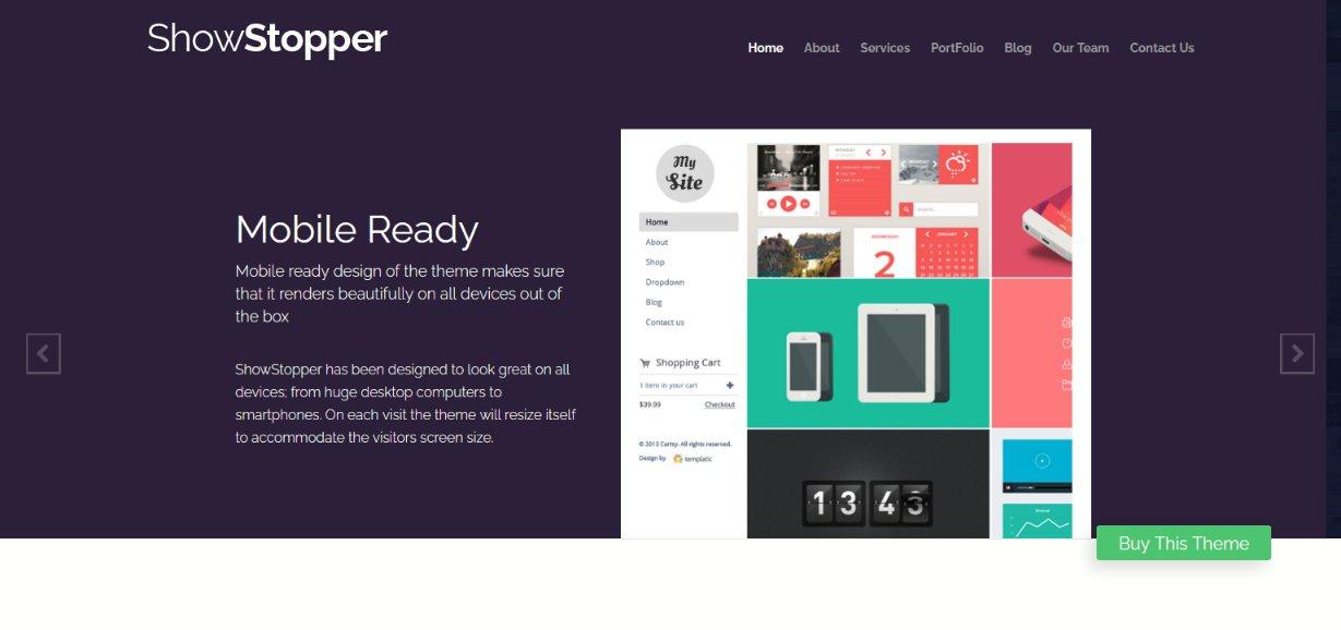 showstopper wordpress demo site