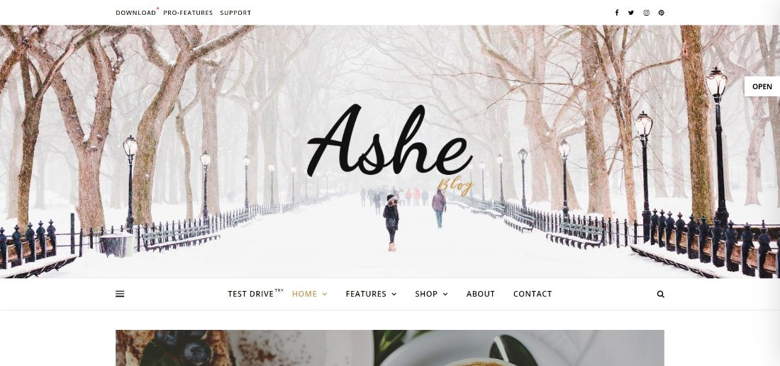 Ashe Free WordPress Blog Theme