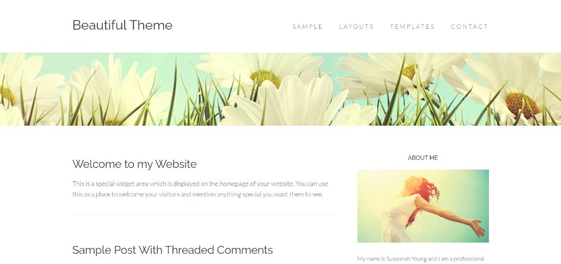 Beautiful Theme demo site