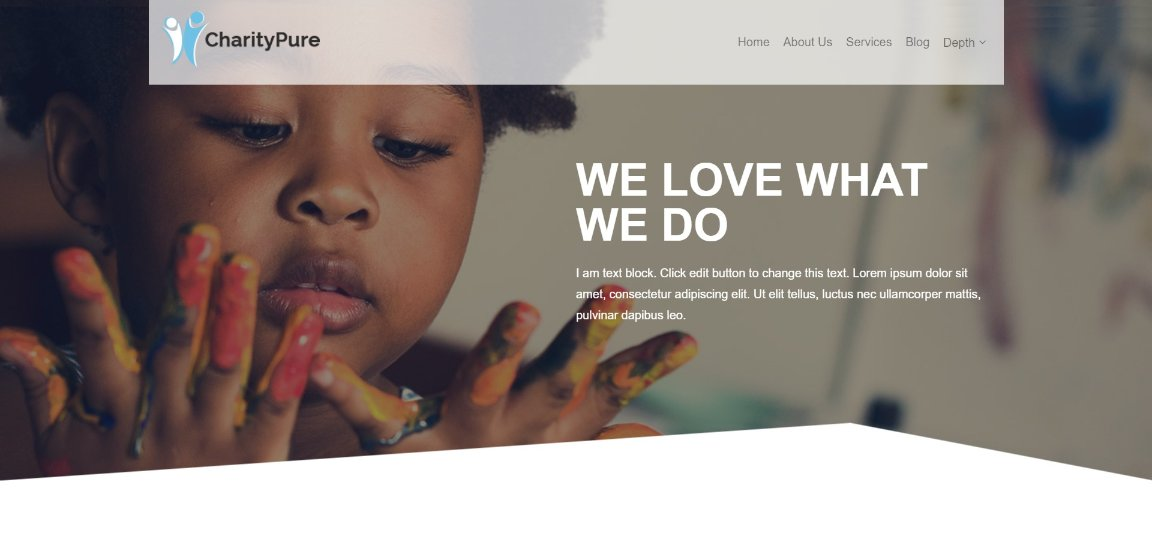 Charity Pro wordpress theme demo