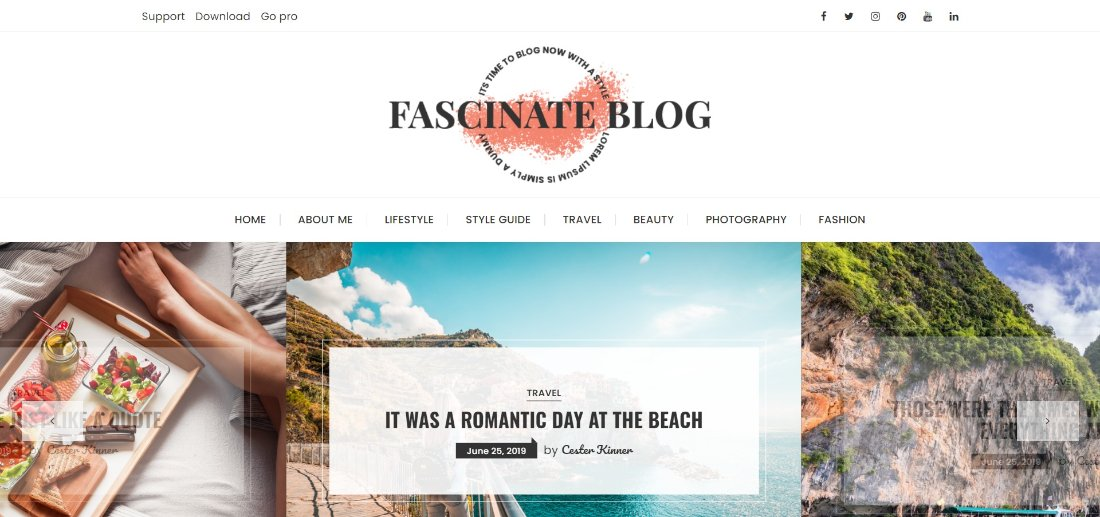 Fascinate Blog theme demo