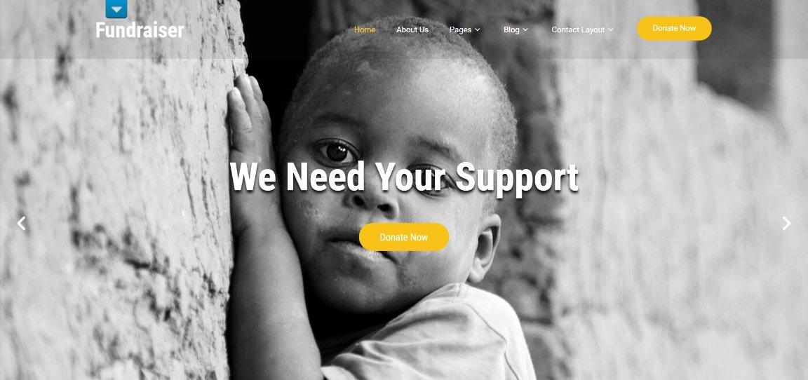 Fundraiser demo template