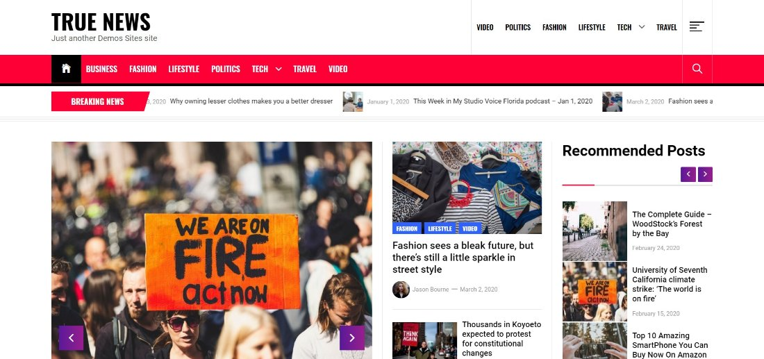 True News wordpress free theme demo