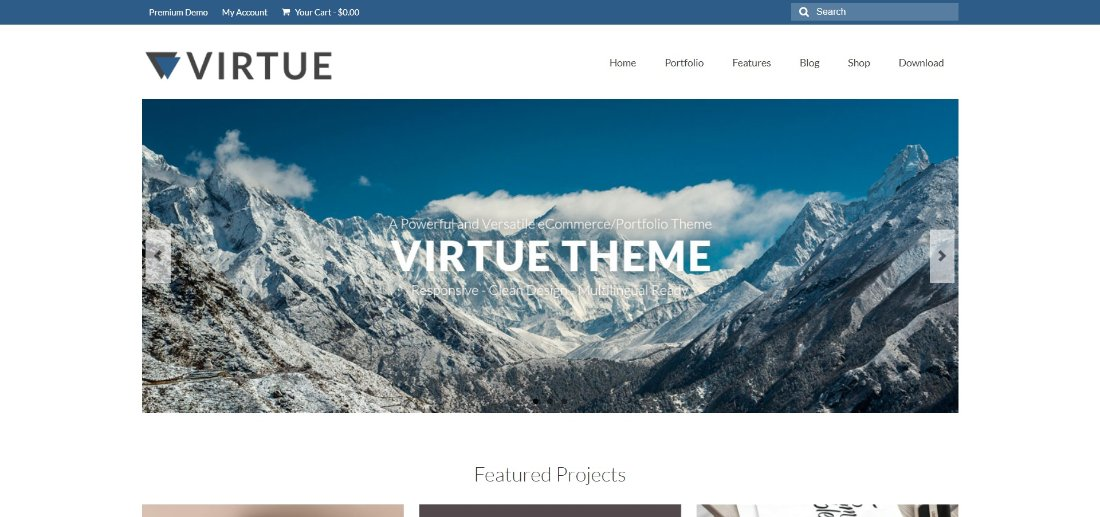 Virtue Theme demo template