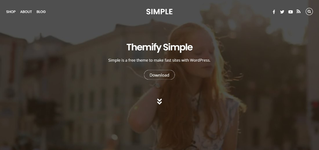 themify Simple wordpress theme demo