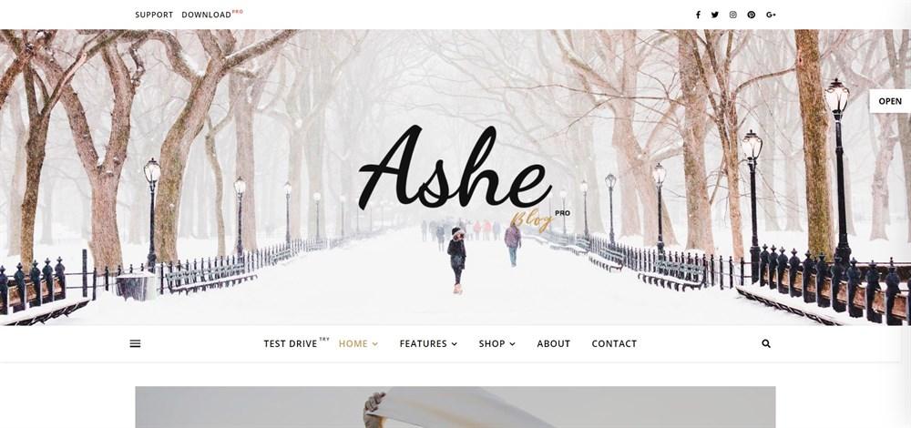 Ashe Premium WordPress Blog Theme demo