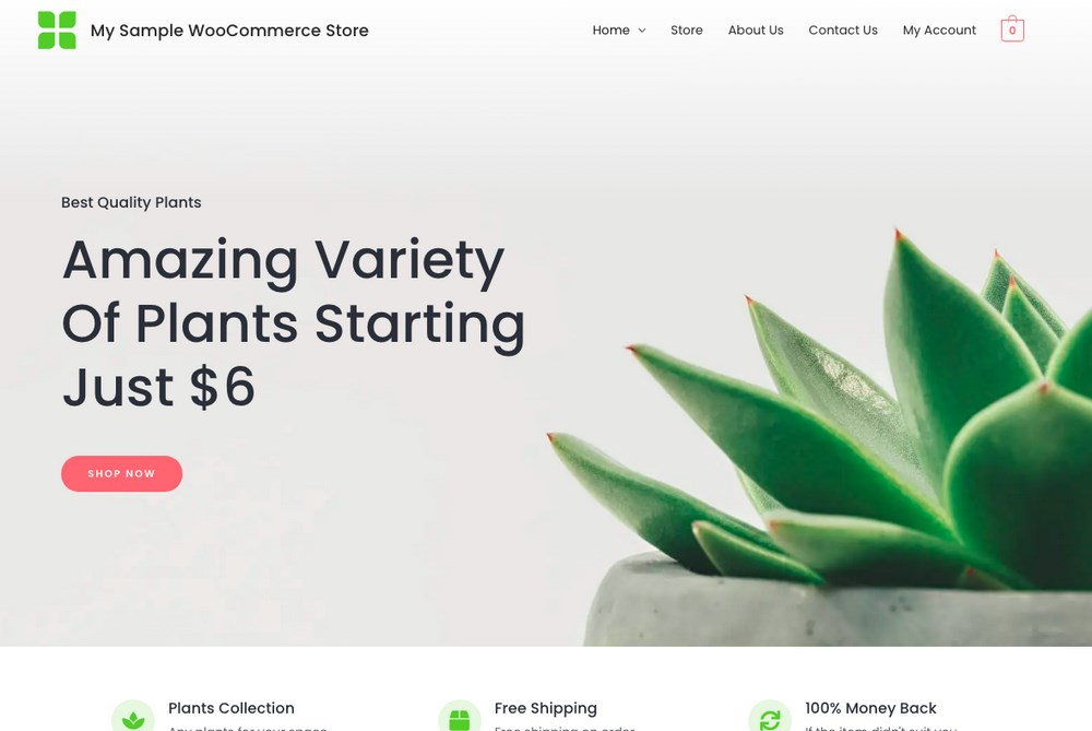 Astra WooCommerce site