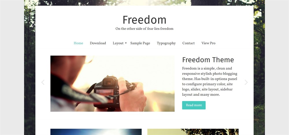 Freedom WordPress theme demo