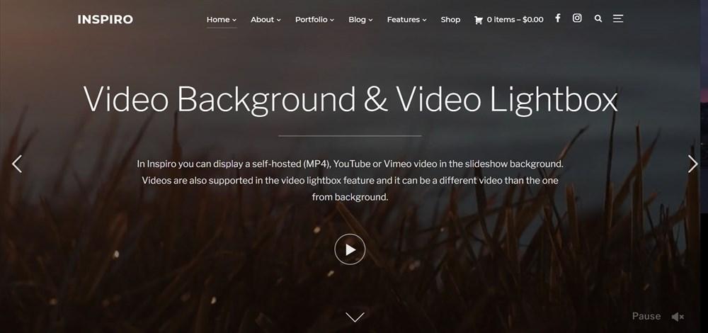 Inspiro Portfolio & Photography WordPress Theme demo