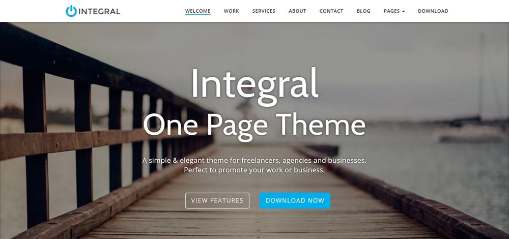 Integral Pro Demo site