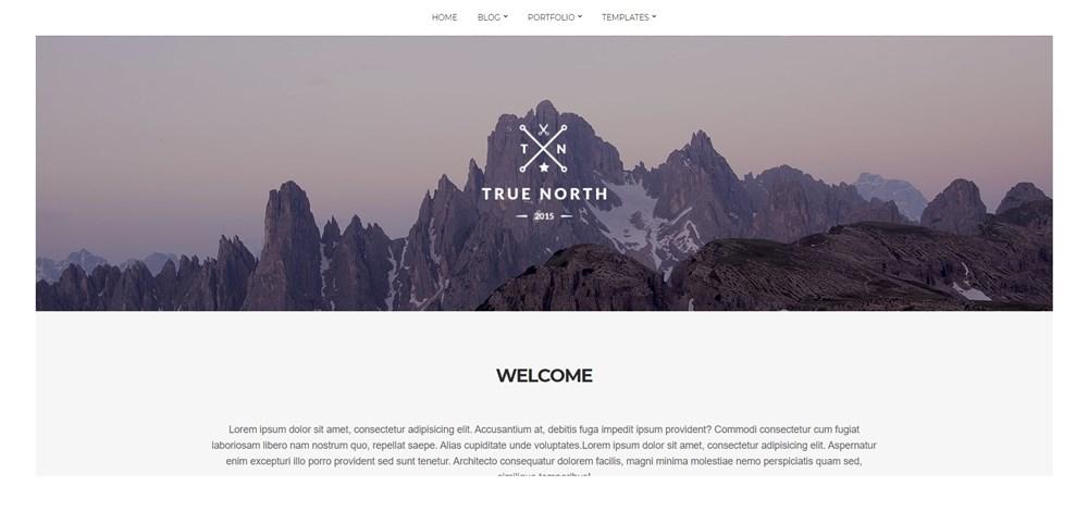 True North free theme