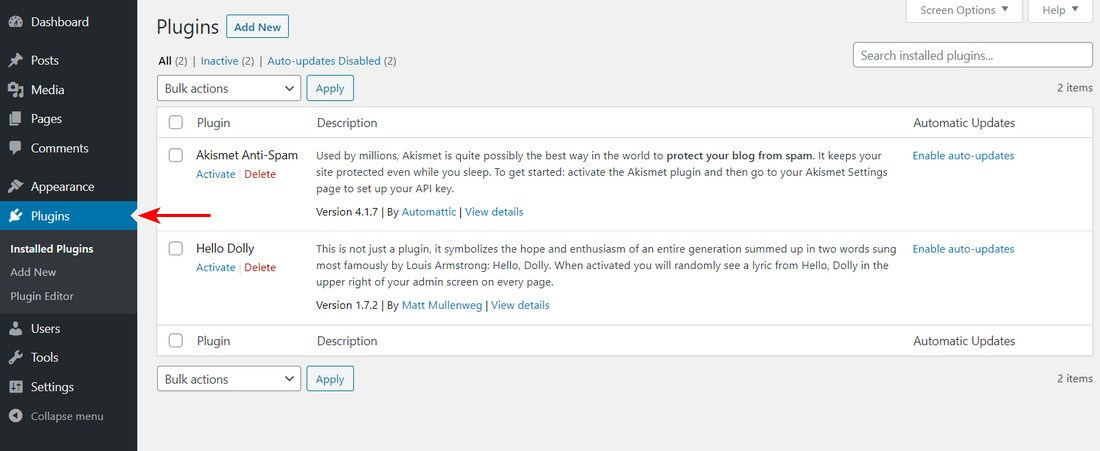 WordPress plugins section