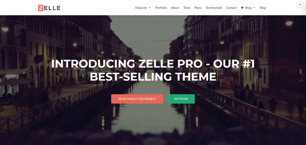 Zelle PRO WordPress Theme Demo