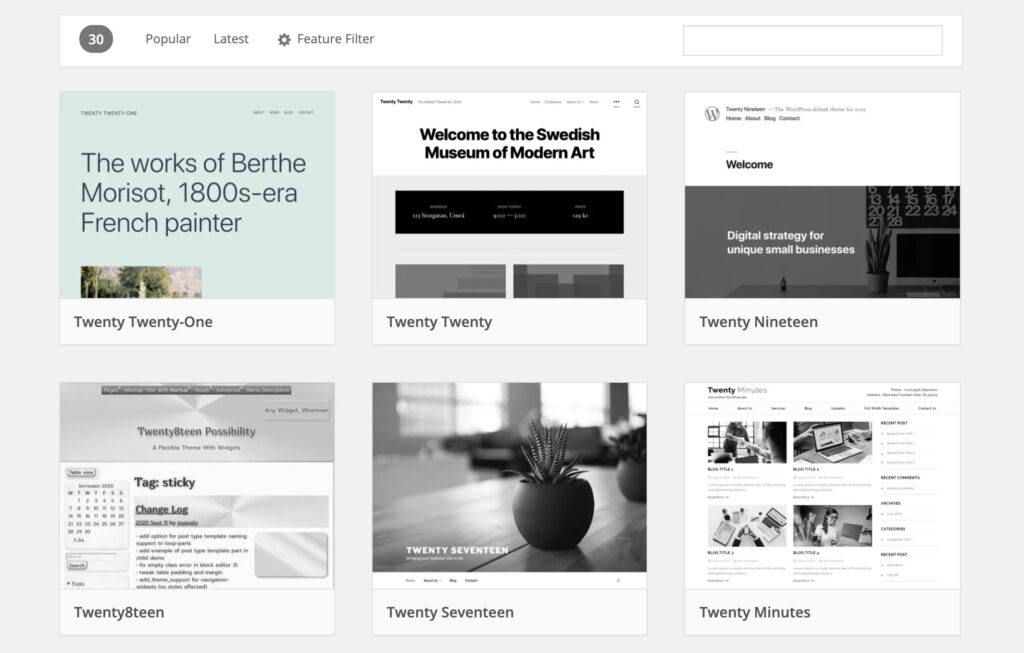 WordPress Theme Search from WP Dashboard