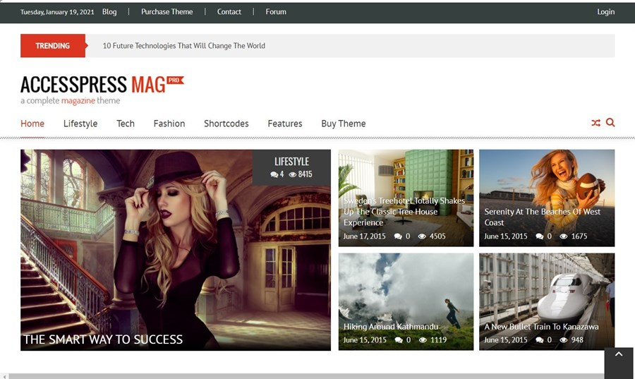 AccessPress Mag theme demo