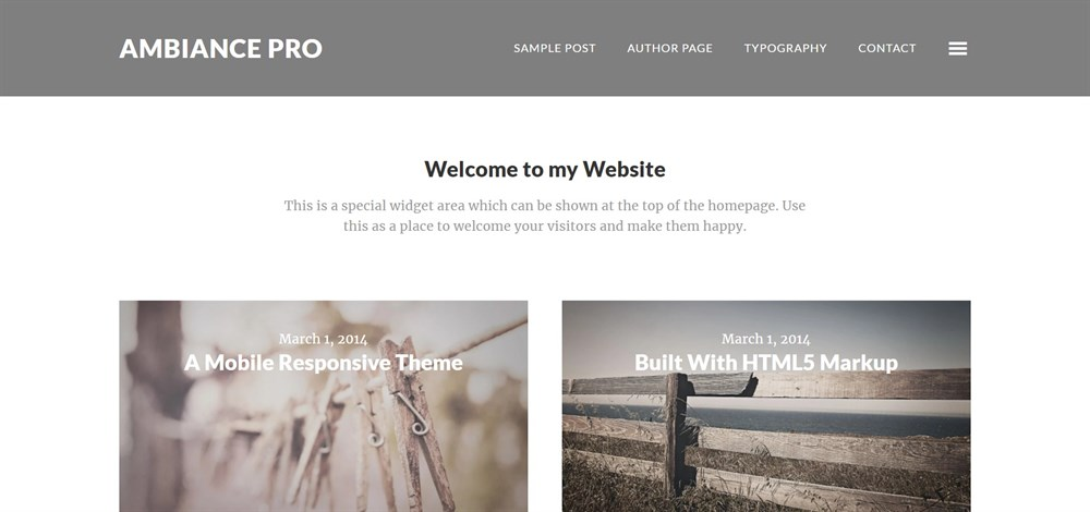 Ambiance Pro WordPress demo site