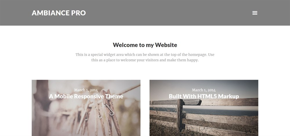 Ambiance Pro WordPress theme demo